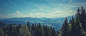 Family Travel Safety Tips: A family enjoying the mountain view