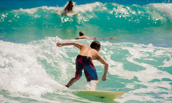 ad9fdc7739e3 ... Beach-Surfer-2  Brevard-Zoo  Hampton-Inn-pool-view ...